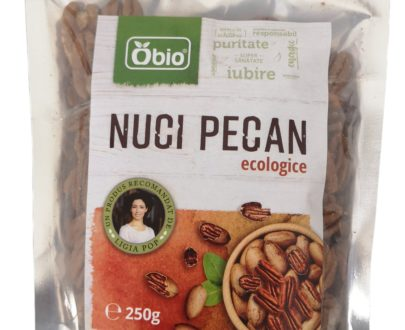 Nuci pecan raw eco 250g
